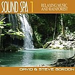 David & Steve Gordon Sound Spa 1 - Relaxing Music And Rainforest