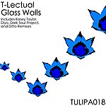 T-Lectual Glass Walls