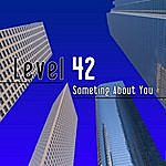 Level 42 Something About You