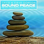 David & Steve Gordon Sound Peace: The 25th Anniversary Collection, Vol. 2