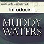 Muddy Waters Introducing….Muddy Waters