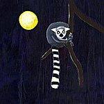 Koyote Midsummer Tales (Remixes)