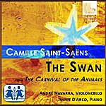André Navarra Saint-Saens: The Swan From The Carnival Of The Animals