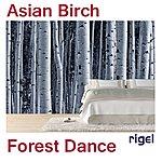 Rigel Asian Birch Forest Dance
