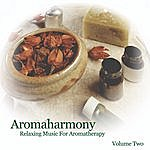 The Reflections Aromaharmony (Music For Aromatherapy Volume Two)