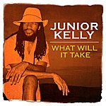 Junior Kelly What Will It Take