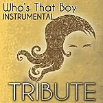 The Party Starters Who's That Boy (Demi Lovato Feat. Dev Tribute) - Single Instrumental