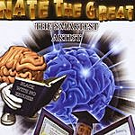Nate The Great The Smartest Artist
