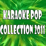 Official Karaoke Pop Collection 2011