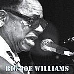 Big Joe Williams Big Joe Williams