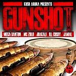 Kush Arora Gunshot Riddim
