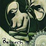 Beseech …from A Bleeding Heart