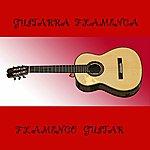 Varios Guitarra Flamenca