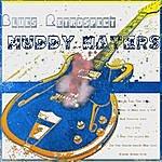 Muddy Waters Blues Retrospect - Muddy Waters (Digitally Remastered)