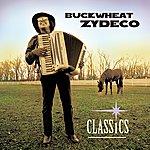Buckwheat Zydeco Classics