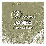 Elmore James It Hurts Me Too