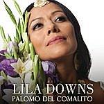 Lila Downs Palomo Del Comalito