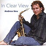 Andrew Neu In Clear View