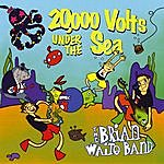 The Brian Waite Band 20,000 Volts Under The Sea