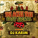 Busy Signal The Ackee Tree
