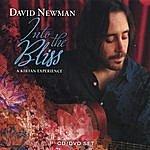 David Newman Into The Bliss: A Kirtan Experience