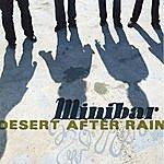 Minibar Desert After Rain