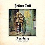 Jethro Tull Aqualung 40th Anniversary