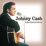 Johnny Cash A Boy Named Johnny