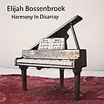 Elijah Bossenbroek Harmony In Disarray