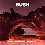 Bush The Sound Of Winter