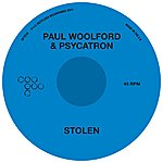 Paul Woolford Stolen