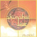 Shimshai Live On Maui