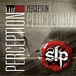SLP Perception