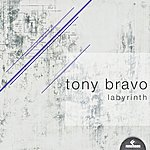 Tony Bravo Labyrinth