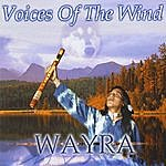 Wayra Voices Of The Wind