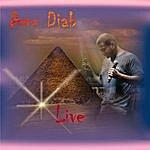 Amr Diab Live