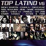 Pitbull Top Latino V.6