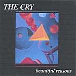 Cry Beautiful Reasons