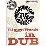 Bigga Bush Biggabush In Dub