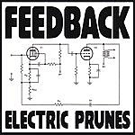 The Electric Prunes Feedback