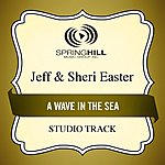 Jeff & Sheri Easter A Wave In The Sea (Studio Track)