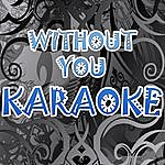 Official Without You (In The Style Of David Guetta Ft. Usher) (Karaoke)