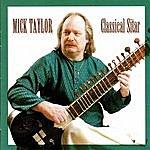 Mick Taylor Classical Sitar