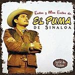 El Puma De Sinaloa Exitos Y Mas Exitos