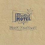 Rob Young Bluebird Motel