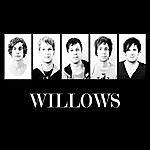 The Willows Willows Ep