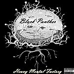 Black Panther Heavy Mental Factory - Single