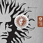Artificial Intelligence Pigeon Hole Remix / Uprising Remix
