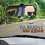 Walter Egan Raw Elegant
