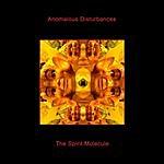Anomalous Disturbances The Spirit Molecule